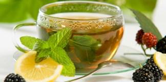 green tea brands in india