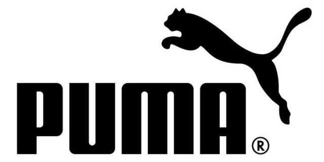 puma-best-shoe-brand-most-popular-shoe-brands-top-shoe-brands-best-sports-shoes