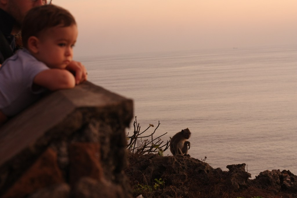 Baby and monkey at Uluwatu