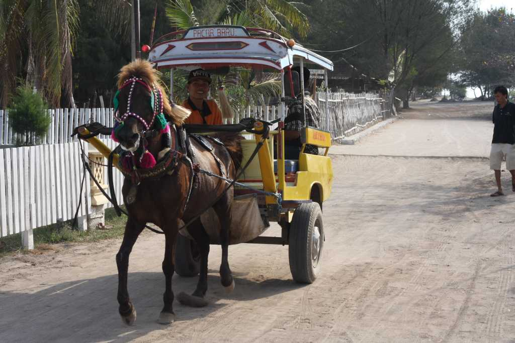 Horse and cart on Gili Islands