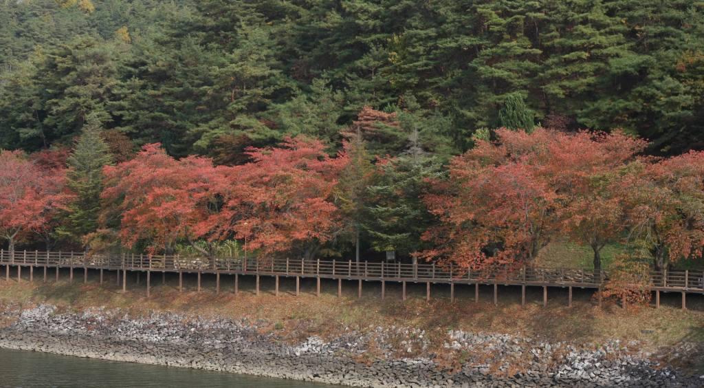 Path along Andongho Lake
