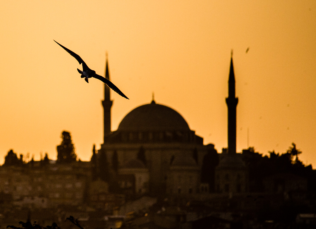 Istanbul mosque sunset