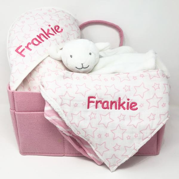 Wash Me Feed Me Baby Gift Basket - Pink