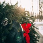 Reflections of the Season for Young Adult Ministry