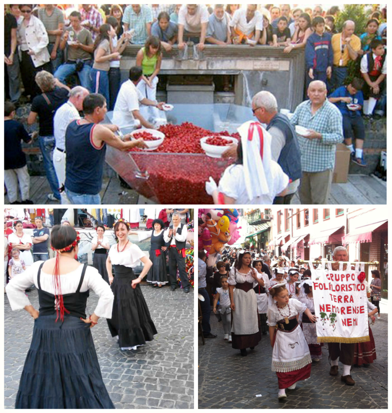 фестиваль клубники в неми
