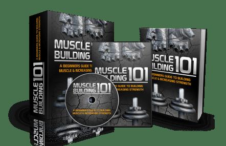muscle building 101 bundle