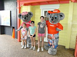Pictures with the Koalas at Dreamworld