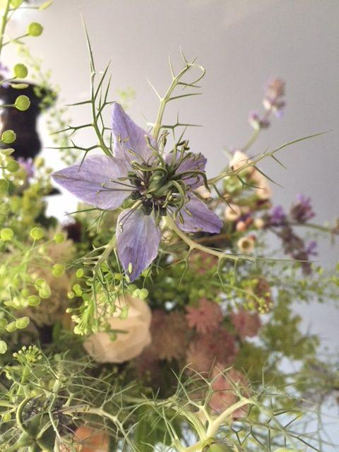 British flowers, bradford on avon
