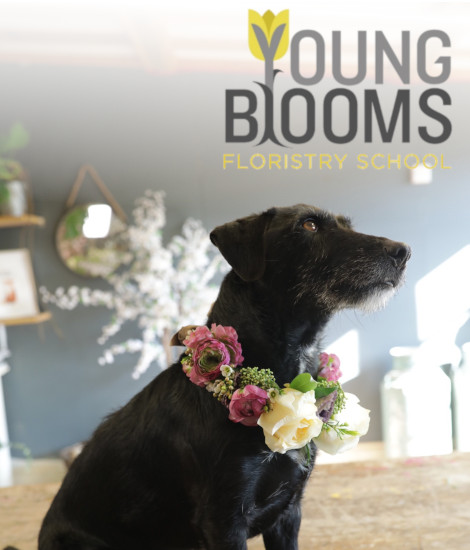Learn anywhere with Young Blooms floristry school