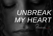 Photo of Unbreak My Heart