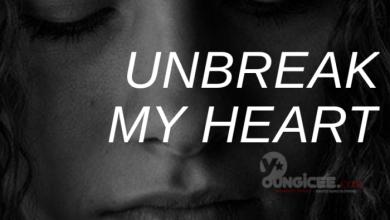 Photo of Unbreak My Heart – Episode 25