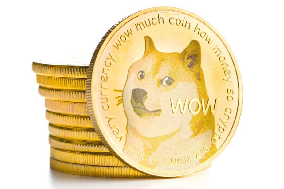 The Meme coin that Elon wants to take to the moon.