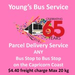 Need a parcel delivered ~ Fast?