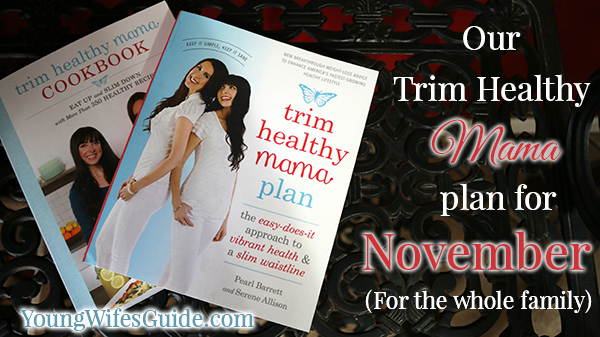 Our THM Plan for November
