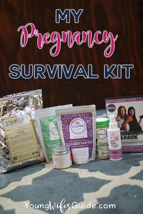 my-pregnancy-survival-kit