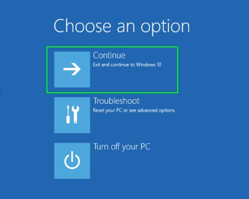 choose option windows 10 after reset