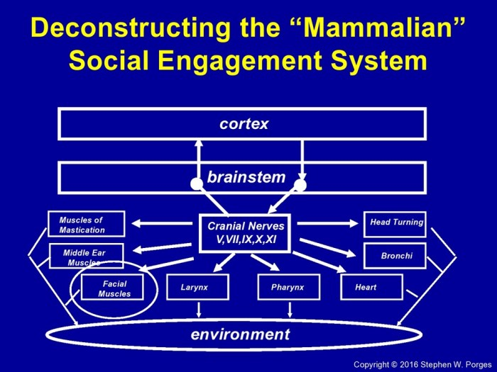 Social Engagement System