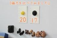 磁力は3センチのボタン磁石に少し届かないくらい