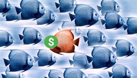 Your Startup Guru - Unconventional financing