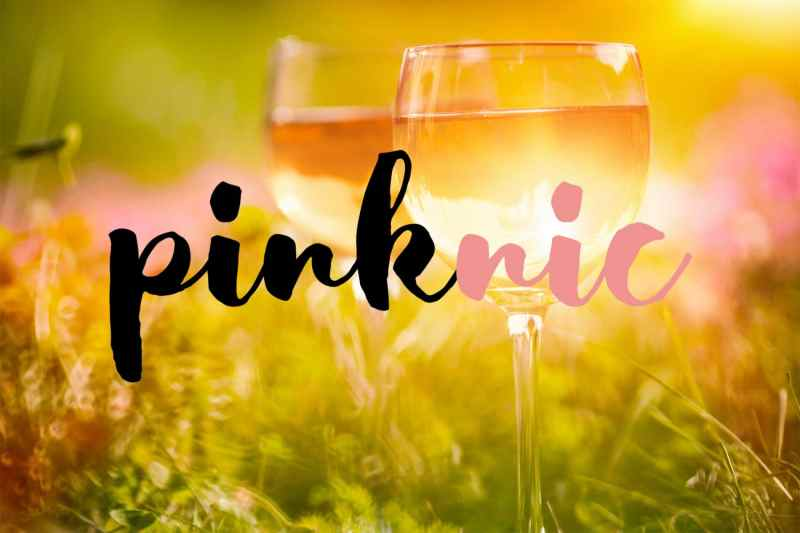 pinknic-illustration