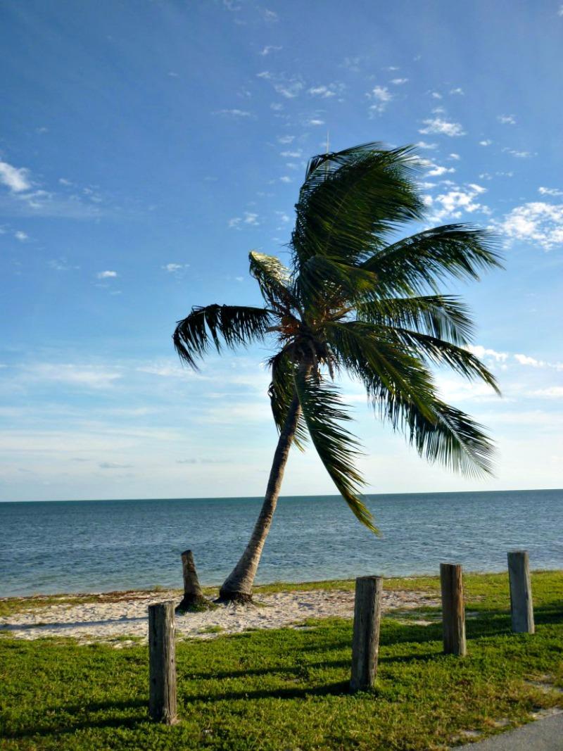 Visiter Key West Floride 3