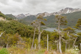 ushuaia-argentina-wedding-photographer-your-adventure-wedding-patagonia-wedding-2