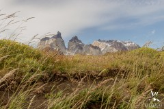 Torres del Paine Wedding Patagonia- Your Adventure Wedding-1