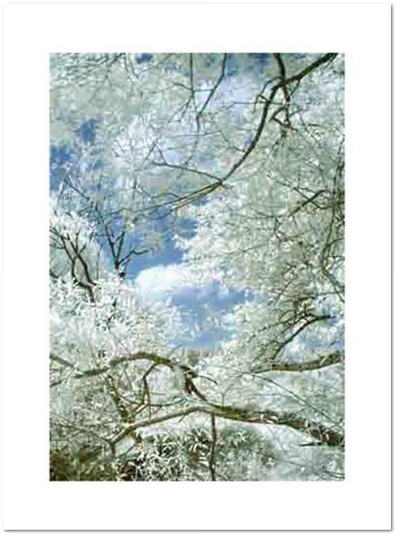 Thomas Ruff jpeg ti01 / 2005/12 farbiger C-Print / Photokarton, Auflage 100 + 20 A.P.-Exemplare, en verso signiert, nummeriert, datiert; 46,3 x 32 auf 57 x 42 cm.