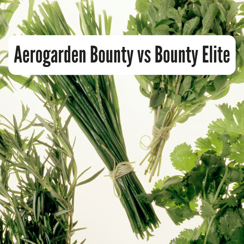 aerogarden bounty vs bounty elite