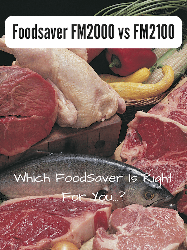 foodsaver fm2000 vs fm2100
