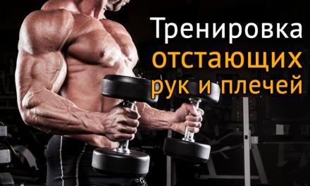 Тренировка отстающих мышц плечей и рук по методу Ричи Пиана