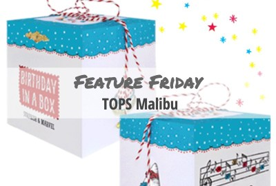 TOPS Malibu Custom Boxes from YourBoxSolution.com