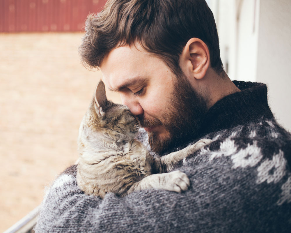 Single Cat Ladies are Getting Love at Last