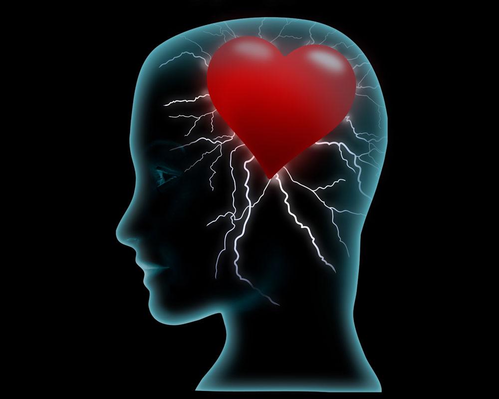 Is Dating Brain Science? YES, says Heidi Crockett