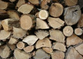 seasoned-firewood-image-indianapolis-in-your-chimney-sweep