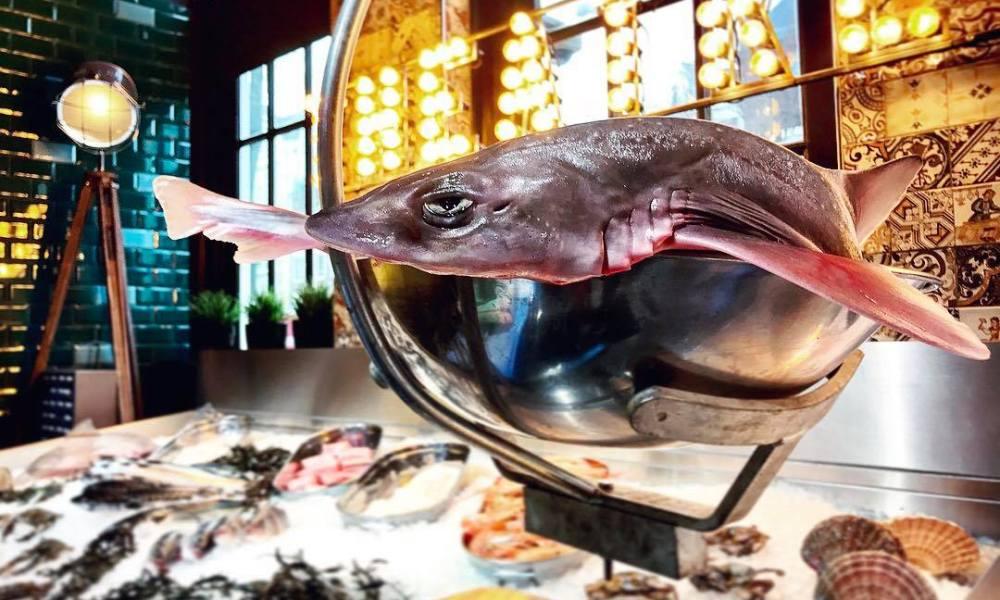 pesca hoofd