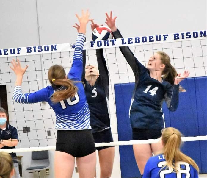 Warren volleyball
