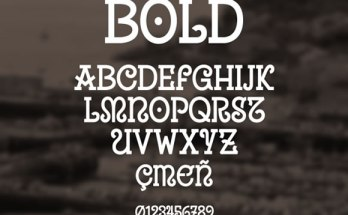 8 Must-have Fresh Free Fonts