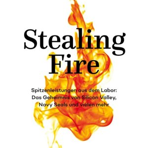 stealing fire review