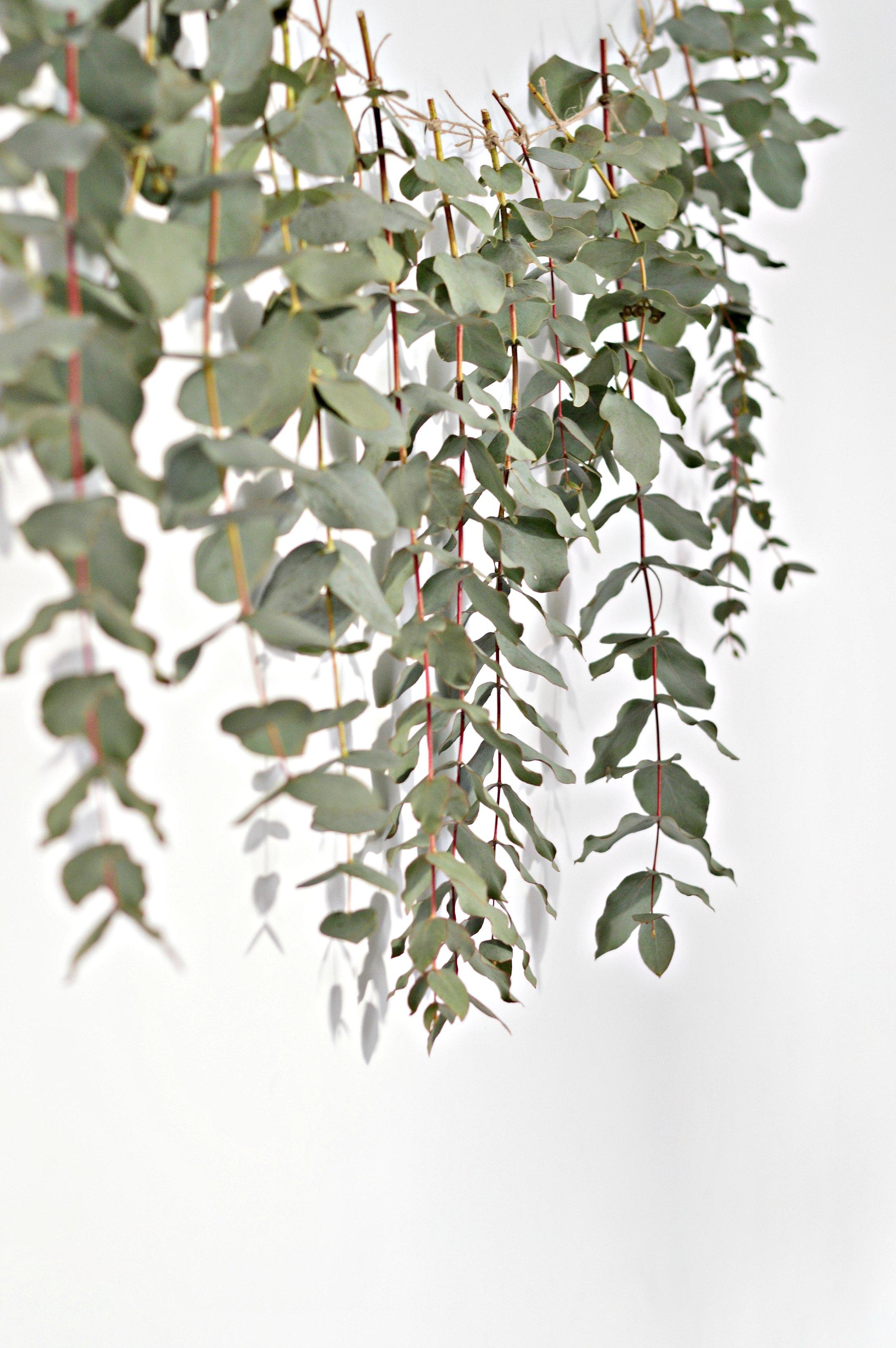 A Quick And Easy Diy Eucalyptus Garland Diy Home Decor Your