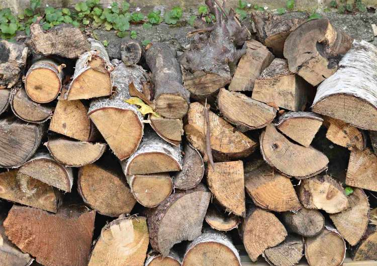 how to build your own log store