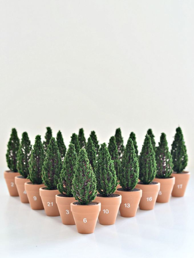 Planted! DIY Christmas advent calendar with mini planted trees