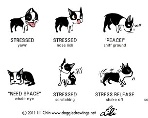 stressposter
