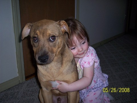Photo by Humane Society of Greater Rochester
