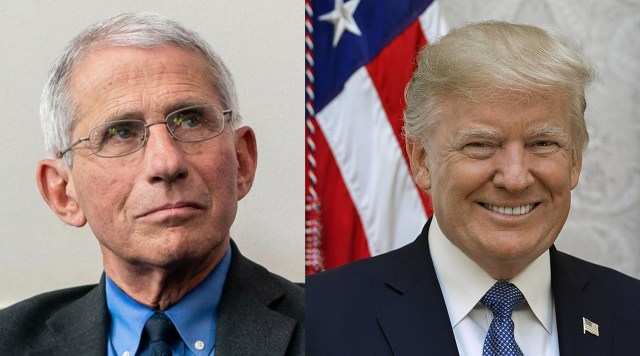 Trump to Ban Dating Apps as Fauci Calls For 'Slut Shaming' to Curb Pandemic