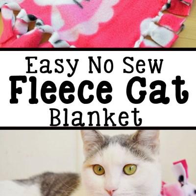 No Sew Fleece Cat Blanket