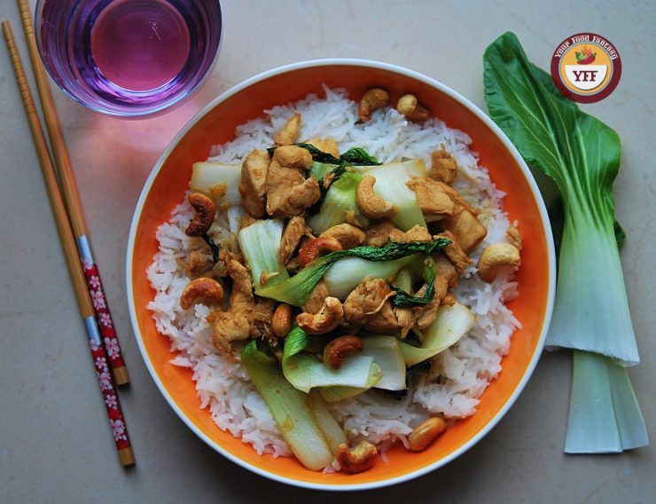 Homemade Teriyaki Chicken Recipe | Your Food Fantasy