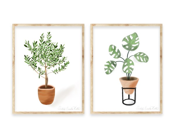 Watercolor House Plant Set