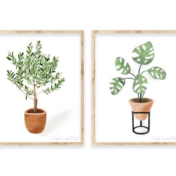 Watercolor House Plant Set