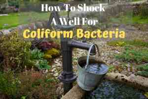 how to shock a well for coliform bacteria